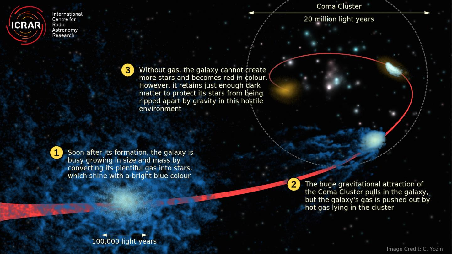 Coma Cluster very early on in its formation