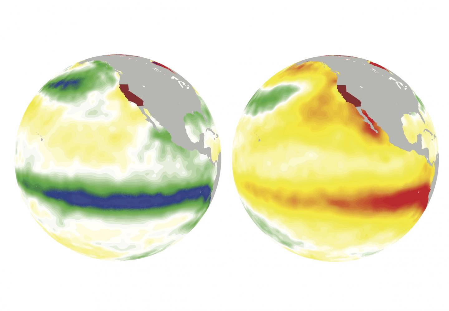 On the left, La Nina cools off the ocean surface (greens and blues) in the winter of 1988. Credit: Jin-Ho Yoon/PNNL