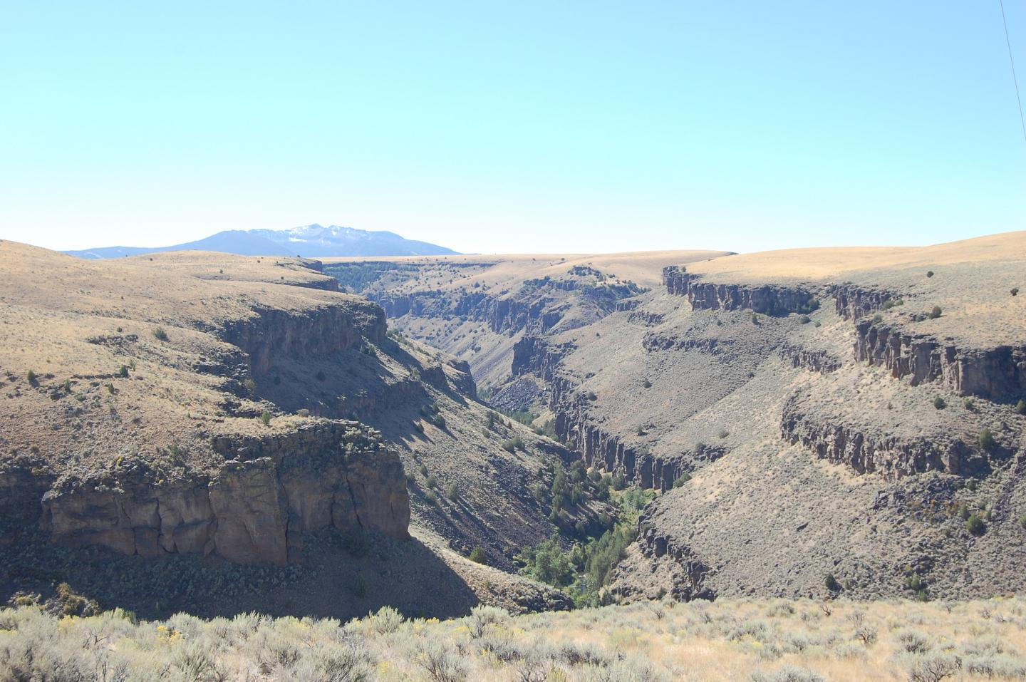 Scenic canyon in southern Idaho, USA, which beautifully exposes several cliff-forming, intensely-welded deposits each recording an individual giant eruption.