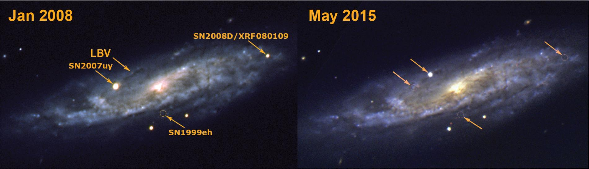 "SN2015bh: the end of a star or an ""impostor"" supernova?"