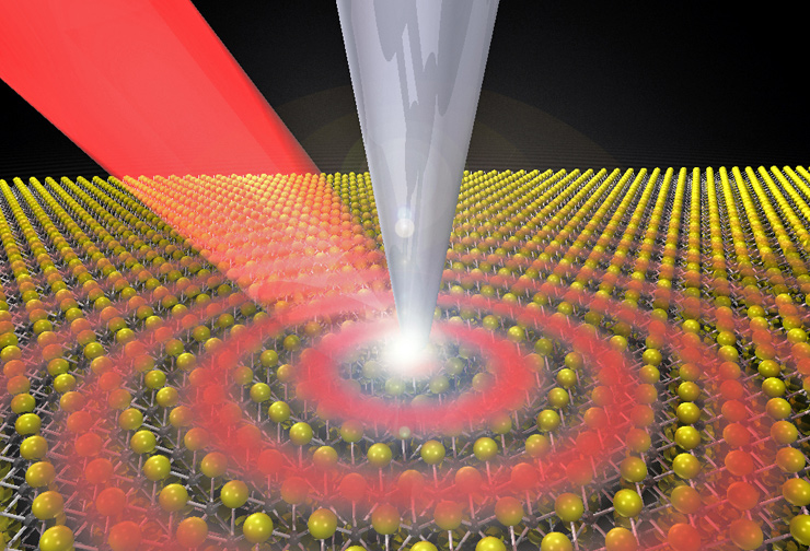 Images capture half-light, half-matter quasiparticles