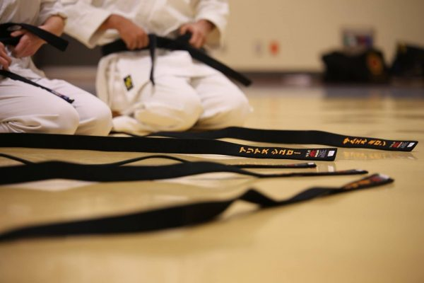 4 Important Reasons Why You Need the Right Software for Your Karate School