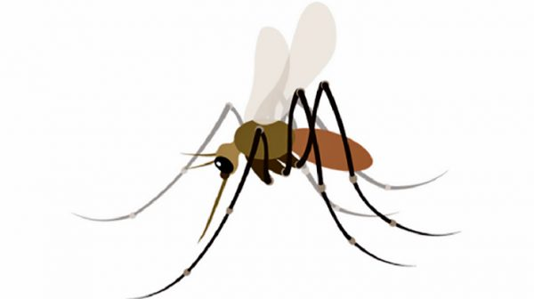We need a mosquito emoji for public health
