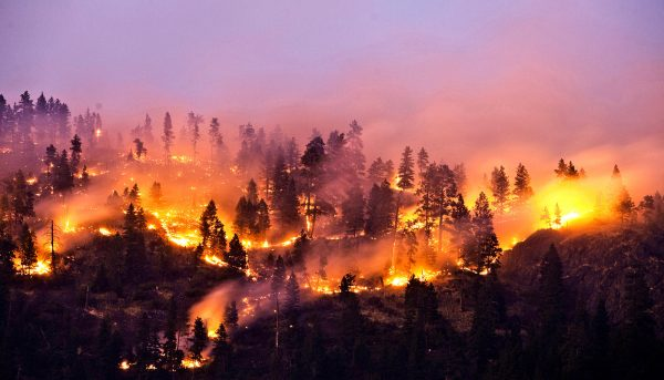 How wildfire smoke affects the atmosphere and climate