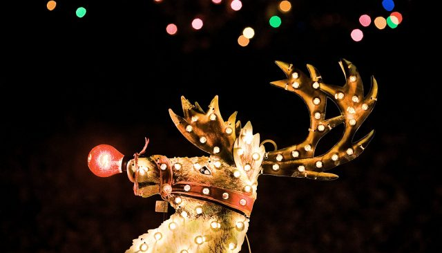 How Rudolph's nose really could glow 'like a light bulb'
